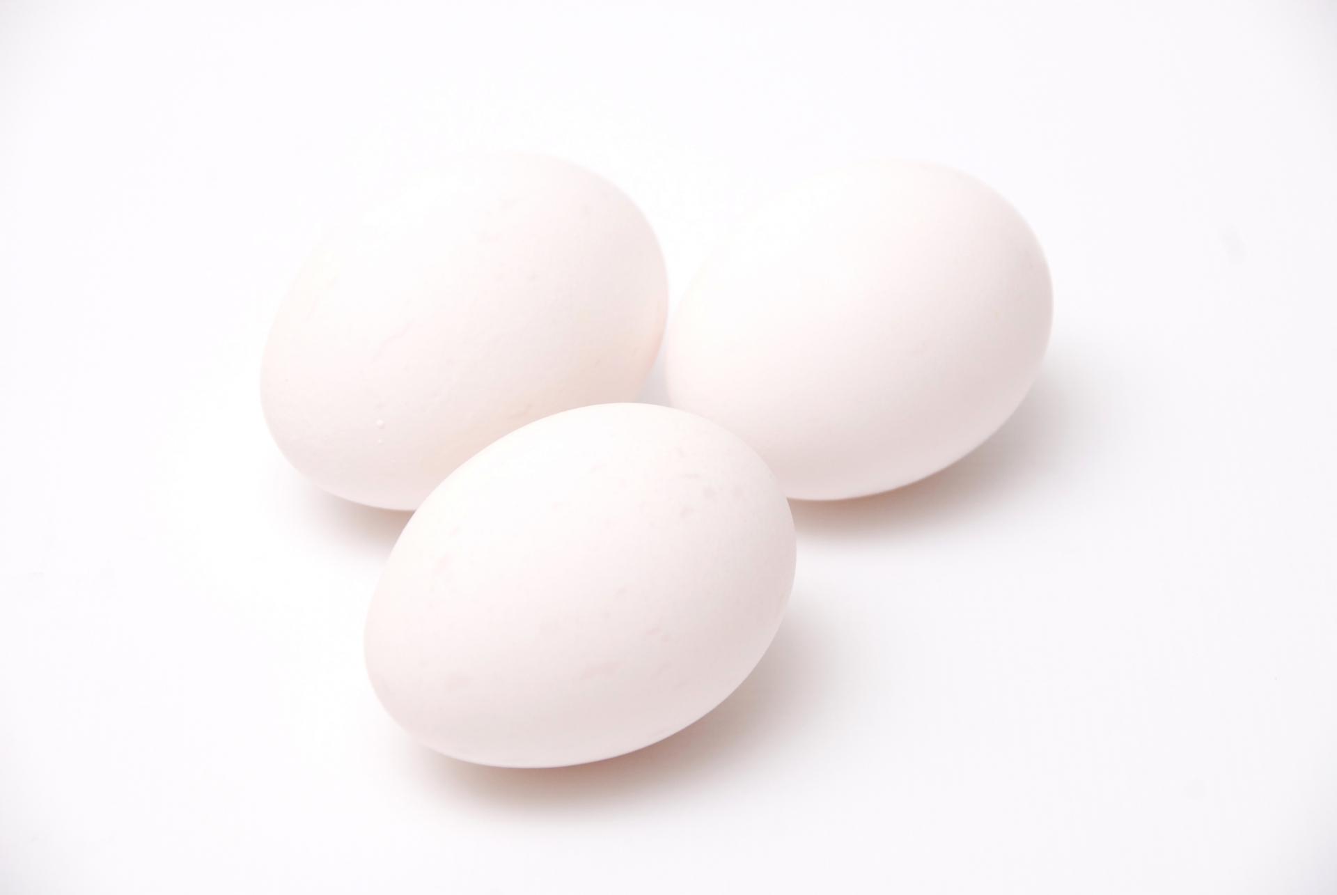 卵白や卵黄で育毛効果が違う?ビオチンが豊富な卵で薄毛対策