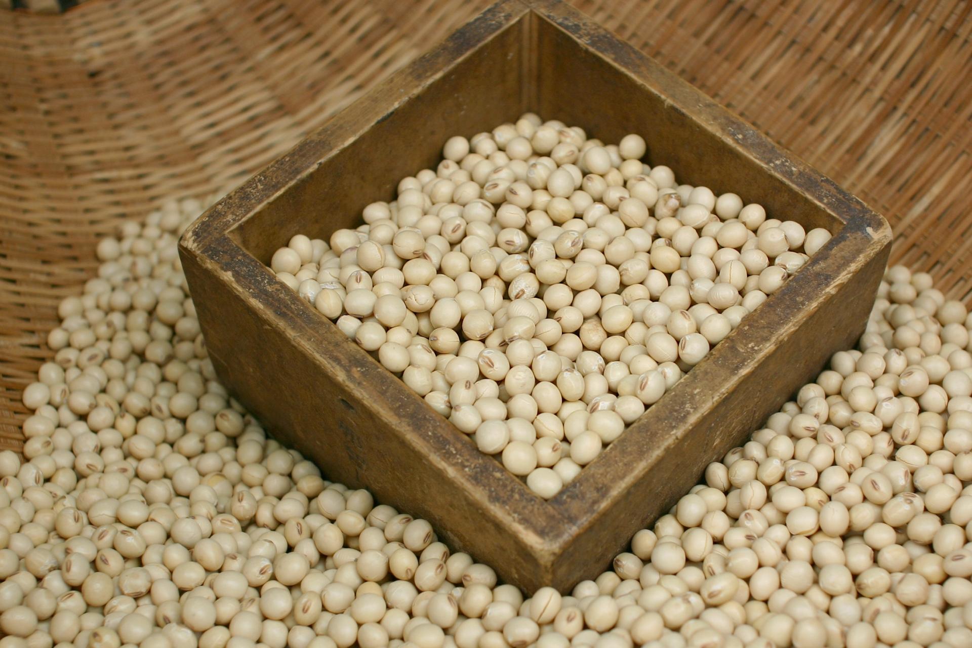 どのように大豆から納豆になるか