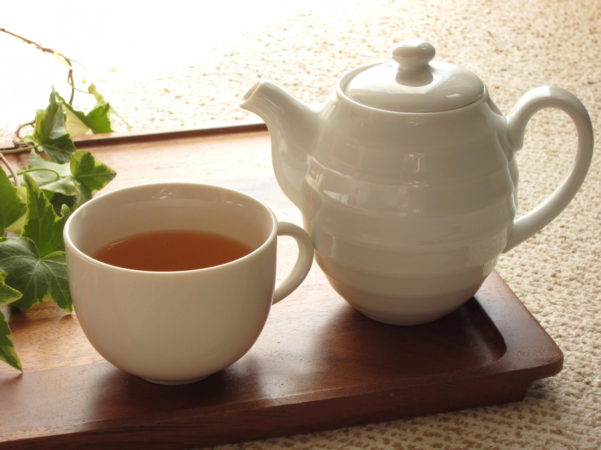 ごぼう茶の育毛効果