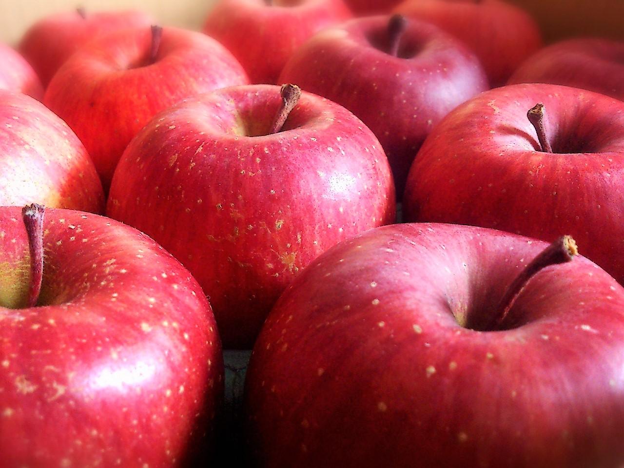 日本でのりんごの生産量