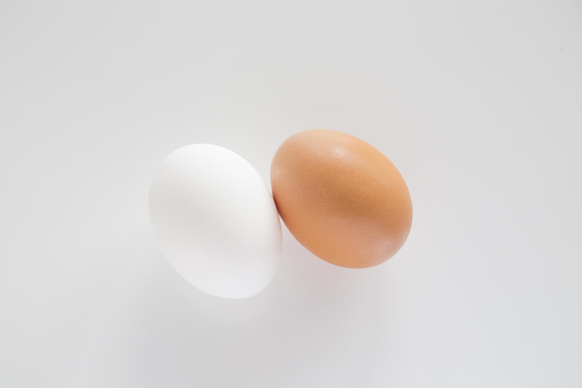 白と茶色の卵には栄養価の違い