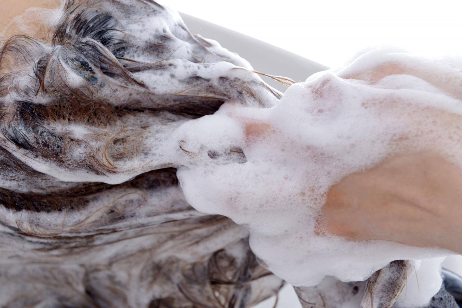 生姜の育毛及び薄毛対策