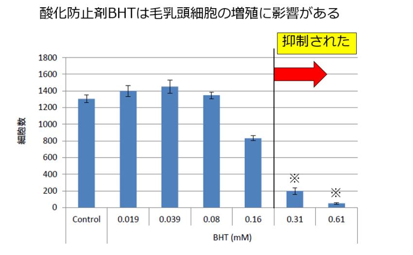 酸化防止剤(BHT)による毛乳頭細胞への影響実験データ